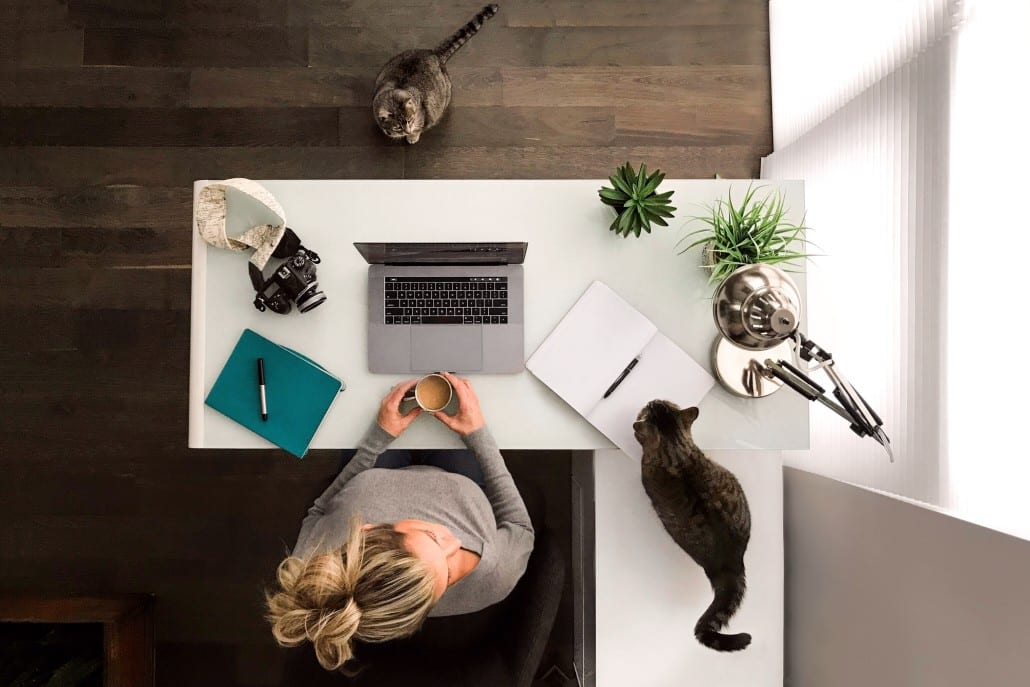woman-working-at-her-desk-with-kitties_t20_3Q1pbN